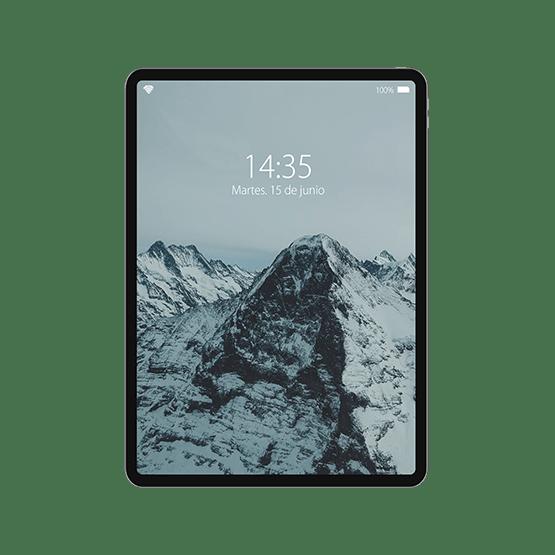 iPad Pro 12,9 (3ª generación)