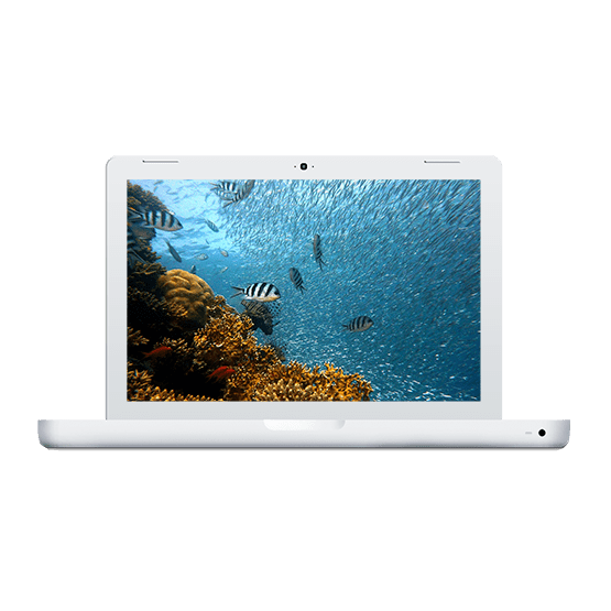 Reparación Macbook 13 inch 2006