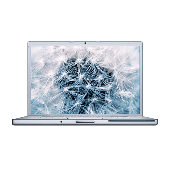 Reparación Macbook Pro 15 inch Core 2 duo 2006