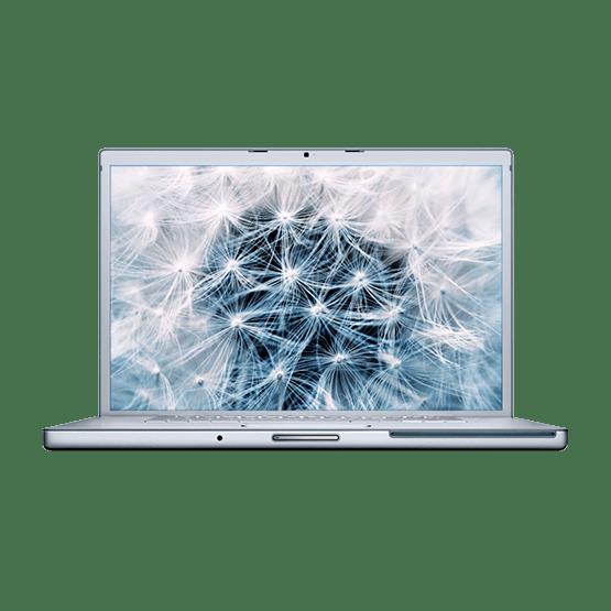 Reparación Macbook Pro 17 inch 2006