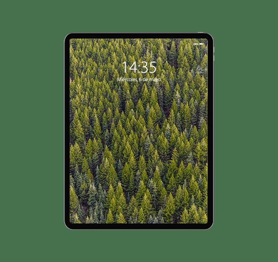 Reparación iPad Pro 12,9 (4ª generación)