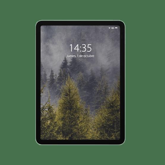 Reparación iPad Air 4