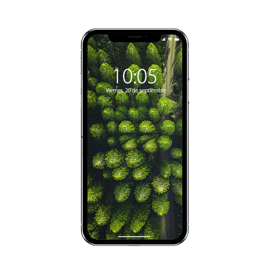 Reparación iPhone 12 Pro