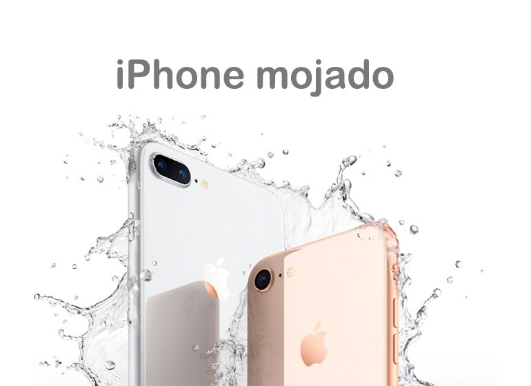 iPhone mojado
