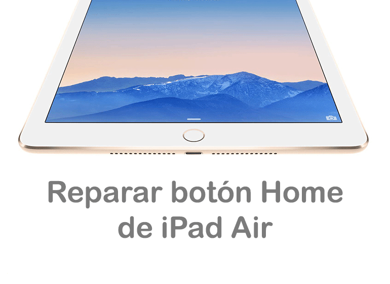 Reparar Botón Home de iPad Air de Servicio Técnico Apple
